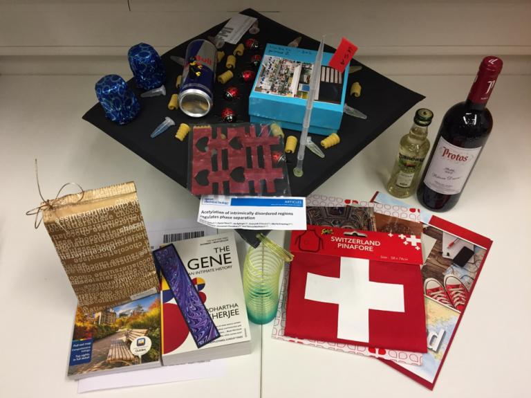 寄稿: スイス留学で学んだ4つのこと